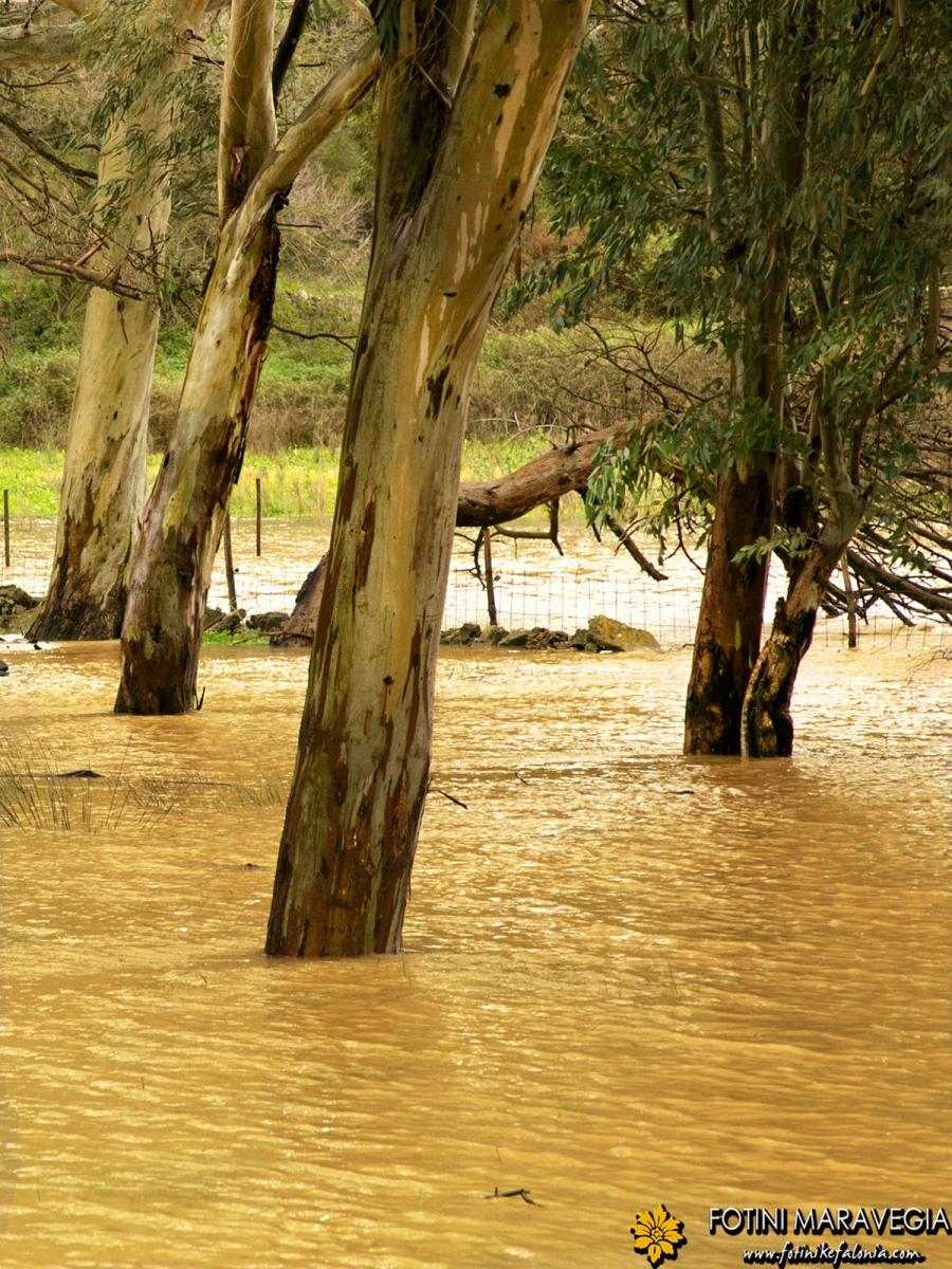 Ο πλημμυρισμένος Κούταβος